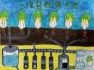 童静 七年级 王雪蜜  土壤自动调节器